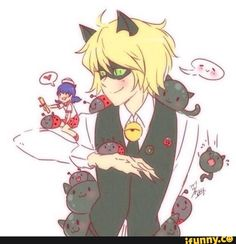 miraculousladybug, catnoir, chatnoir, marinettecheng, marichat