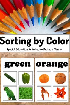 Love this activity for learning colors! So fun and engaging! Works great for Autism, Special Education, Occupational Therapy, Early Intervention. Special Education Activities, Special Education Classroom, Educational Activities, Teacher Resources, Physical Activities, Sorting Colors, Teaching Kindergarten, Teaching Ideas, Sorting Activities