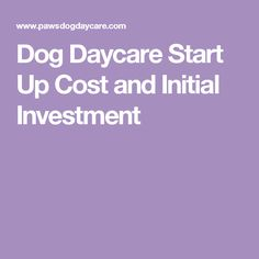 Dog Daycare Start Up Cost and Initial Investment