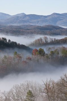 The Smoky Mountains - See where they got their name? Take a fine art workshop in the NC mountains this summer! http://www.cullowheemountainarts.org
