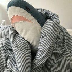 (づ ̄ ³ ̄)づ This is very cute, stuffed shark. Don't de afraid it doesnot concern. Save it to your phone. When you feel sad just look at her. This shark cheers up. White Aesthetic, Aesthetic Photo, Aesthetic Pictures, Cute Shark, Baby Shark, Shark Meme, Sharkboy And Lavagirl, Shark Plush, Cute Toys
