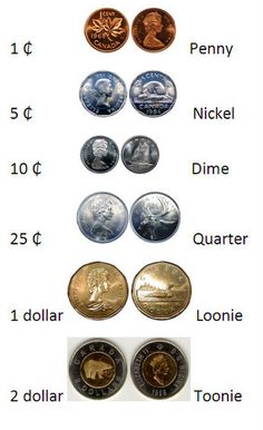 "Canadians don't call a two-dollar coin a ""two dollar coin"", we call it a Toonie. In fact, all the Canadian coins have names as listed. The ""penny"" will be discontinued and is no longer made by the Canadian Mint. Canadian Things, I Am Canadian, Canadian History, Canadian Culture, Old Coins, Rare Coins, Voyage Canada, Two Dollars, World Thinking Day"