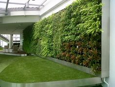 What a wall! So magnificent, we are very proud of this project.   #magnificent #greenwall #indoor #garden