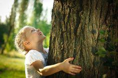 Как деревья лечат?