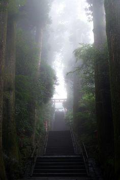 """""""Hakone shrine, Japan"""