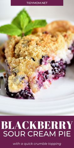 Sweetened sour cream swirls around sweet blackberries in this delightful Blackberry Sour Cream Pie featuring an easy refrigerated pie crust and quick crumble topping.PRINTABLE RECIPE at TidyMom.net #pie #blackberry #blackberrypie #creampie #sourcream Easy No Bake Desserts, Homemade Desserts, Sour Cream, Cheesecakes, Strawberry Desserts, Cheesecake Strawberries, Cheesecake Bars, Cheesecake Recipes, Cream Pie Recipes
