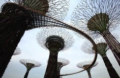 2Supertrees-of-Singapore-just3ds.com