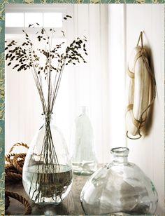 plants in old wine vases