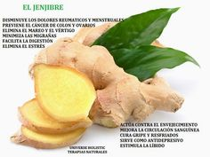 Home Remedies For Cough: Ginger Ginger is one of the most popular natural cures for a cough. Cut fresh ginger into small slices and crush them slightly. Put them in a cup of water and bring to a. Natural Home Remedies, Herbal Remedies, Cold Remedies, Natural Healing, Health Remedies, Health Benefits Of Ginger, Tea Benefits, Ginger Essential Oil, Essential Oils
