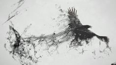The Crow: -Destiny, personal transformation, alchemy -Higher perspective -Being fearless, audacious -Flexibility, adaptability