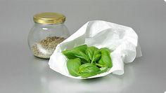 Come conservare il basilico - I consigli di ViviDanone