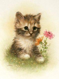Belles illustrations  de chats: