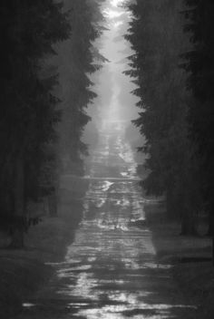 SjuBrunnarsStigFromUppståndelseKapelletOnSkogskyrkogården@EnskedeStockholm20090707