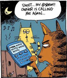 Cats Cartoon Cute Kitty 52 Ideas For 2019 Cat Jokes, Funny Cat Memes, Funny Cartoons, Silly Cats, Cats And Kittens, Cute Cats, Crazy Cat Lady, Crazy Cats, Cat Comics