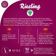 Los vinos provenientes de la cepa Riesling son gran potencial de guarda gracias a la combinación de acidez y azúcar que contiene la uva.