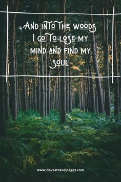 "Famous John Muir Quotes: ""And into the woods I go, to lose my mind and find my soul. Inspiring Sayings, Inspirational Quotes, Motivation Inspiration, Travel Inspiration, Wilderness Quotes, My Mind Quotes, John Muir Quotes, Into The Woods Quotes, Travel Captions"