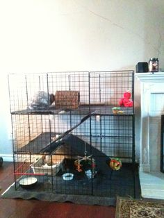 Guinea pig cage DIY @Lexi Pixel Garriott Thomas - This might work for Alfred to give him more space.
