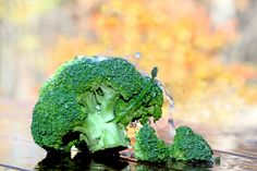 Organic Broccoli - Photo by Sherry Van Dyke