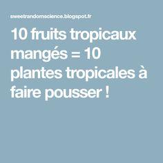 10 fruits tropicaux mangés = 10 plantes tropicales à faire pousser !