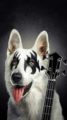 Wolf Images, Wolf Photos, Best Rock Bands, Cool Bands, Kiss Rock, Jeane Manson, Make Mine Music, Old School Chopper, Vintage Kiss