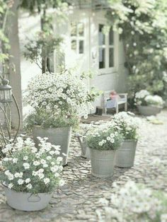 Using outdoor planters is the perfect way to create beautiful container gardens for your front porch, patio or any outdoor space. ideas plants 16 Easy Container Gardening Ideas for Your Potted Plants Outdoor Planters, Garden Planters, Outdoor Gardens, Patio Plants, Outdoor Potted Plants, Zinc Planters, Fall Planters, Planting Plants, Outdoor Flowers
