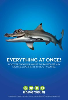 Universeum Sience Center: Everything at Once, 1