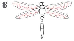 how to draw a dragonfly. This website has great instructions on how to draw this dragonfly. Great for those who don't think they can draw.