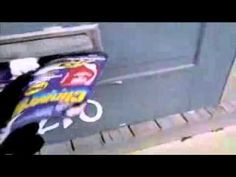 Cat vs Mailman LOL :-)