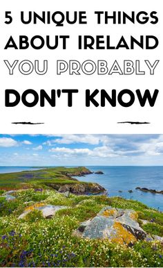 Ireland is a fantastic country full of quirky facts and amazing legends. I…