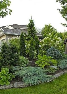 Check right here for Outdoor Landscaping Ideas Privacy fence landscaping Privacy landscaping Large yard landscaping Evergreen landscape Fence landscaping Front yard land. Privacy Fence Landscaping, Small Front Yard Landscaping, Landscaping Trees, Backyard Fences, Outdoor Landscaping, Backyard Privacy, Landscaping Design, Inexpensive Landscaping, Sloped Backyard
