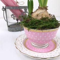 Frühling in der Tasse