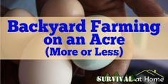 Backyard Farming on an Acre (More or Less) This post may contain affiliate links. Click to read my full affiliate disclosure. -Posted APRIL 18, 2014 ; By Patrick