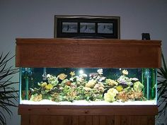 Diy Basic Aquarium Canopy Plan