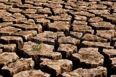 argile terre: Drought and cracked clay ground in the dry season Banque d'images