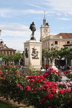 Gorgeous rose filled Alcala de Henares, #Spain in springtime