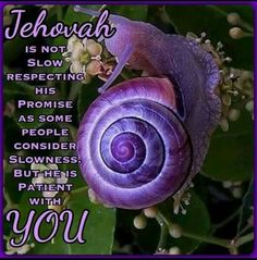 """2Pe 3:9 """"Jehovah is not slow concerning his promise, as some people consider slowness, but he is patient with you because he does not desire anyone to be destroyed but desires all to attain to repentance."""