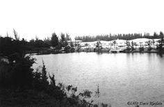 1959 – Emerald Lake - Amazing Midcentury Photographs of Miami Page 2 of 2 Best of Web Shrine Miami Photos, Emerald Lake, Mid Century, River, Amazing, Outdoor, Outdoors, Outdoor Games, Retro