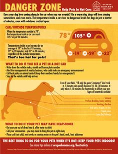 Updated for 2015: the OHS hot cars #infographic. How hot is too hot for #pets? What to do if you see a pet trapped in a hot car, how to handle #heatstroke, more. #heatsafety #dogsincars #summersafety