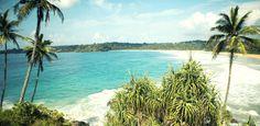 Get Qualified with Santosha's Authentic Yoga Experience in Tropical surf paradise. Two stunning locations - Bali & Sri Lanka. Yoga Instructor Course, Yoga Teacher Training Bali, Ayurvedic Spa, Bali Yoga, Jungle Gardens, In Season Produce, Solo Travel, Amazing Nature, Sri Lanka
