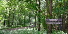 Viikin Arboretum
