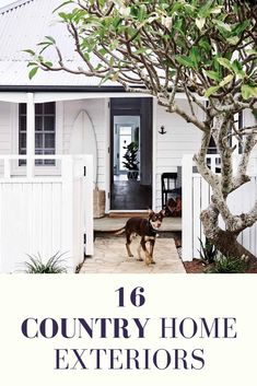 From weatherboard cottages to regal estates, be inspired by our pick of the top country home exteriors (and their resident pets!) | Photography: Mark Roper | Styling: Jessica Hanson