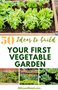 50+ Ideas To Build Y