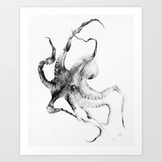 Octopus Art Print by Alexis Marcou - $16.00
