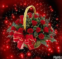 The perfect Basket Red Roses Animated GIF for your conversation. Discover and Share the best GIFs on Tenor. Roses Gif, Flowers Gif, Beautiful Bouquet Of Flowers, Beautiful Flowers Wallpapers, Beautiful Rose Flowers, Exotic Flowers, Beautiful Love Pictures, Beautiful Gif, Rose Images
