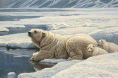 Robert Bateman Arctic Family Giclee Polar Bears