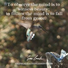 To observe the mind is to witness beauity; to follow the mind is to fall from grace.