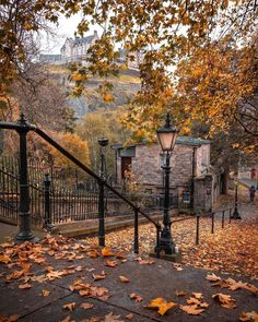 Seasons Of The Year, Best Seasons, Autumn Cozy, Autumn Feeling, Autumn Scenery, Autumn Trees, Autumn Aesthetic, All Nature, Autumn Photography