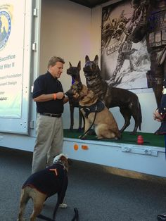 Its great to be with Lucca, a true Military Working Dog HERO at post- #RoseParade w/ @NaturalBalance #RosePets