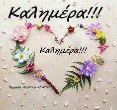 Good Night, Good Morning, Beautiful Pink Roses, Yellow Daisies, Nighty Night, Buen Dia, Bonjour, Good Night Wishes, Good Morning Wishes