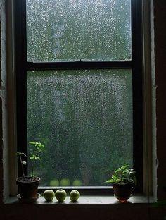 alacritousgrace: Rainy Day   mediante Tumblr en We Heart Ella.  http://weheartit.com/entry/58955895/via/Didier_Emotion